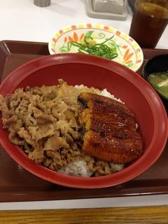 sukiya2.jpg